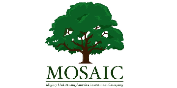 MIGHTY OAK STRONG AMERICA INVESTMENT COMPANY logo