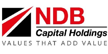 NDB Capital Holdings Limited logo