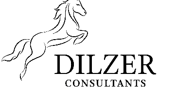 Dilzer Consultants Pvt Ltd logo